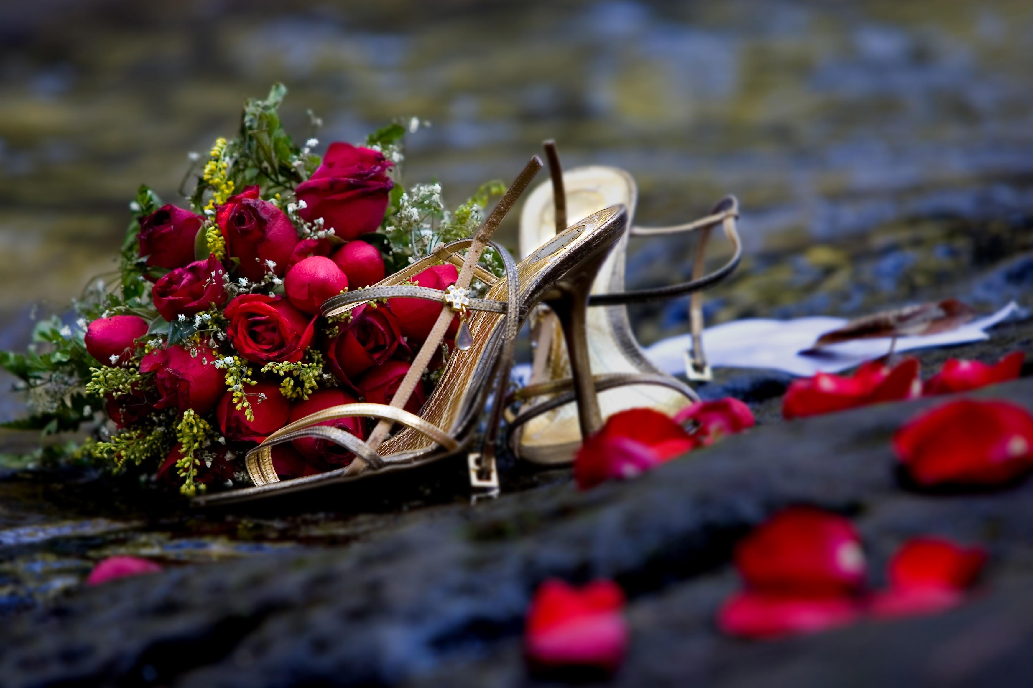 148480 Hintergrundbild herunterladen Blumen, Roses, Blütenblätter, Strauß, Bouquet, Romantik, Schuhe - Bildschirmschoner und Bilder kostenlos