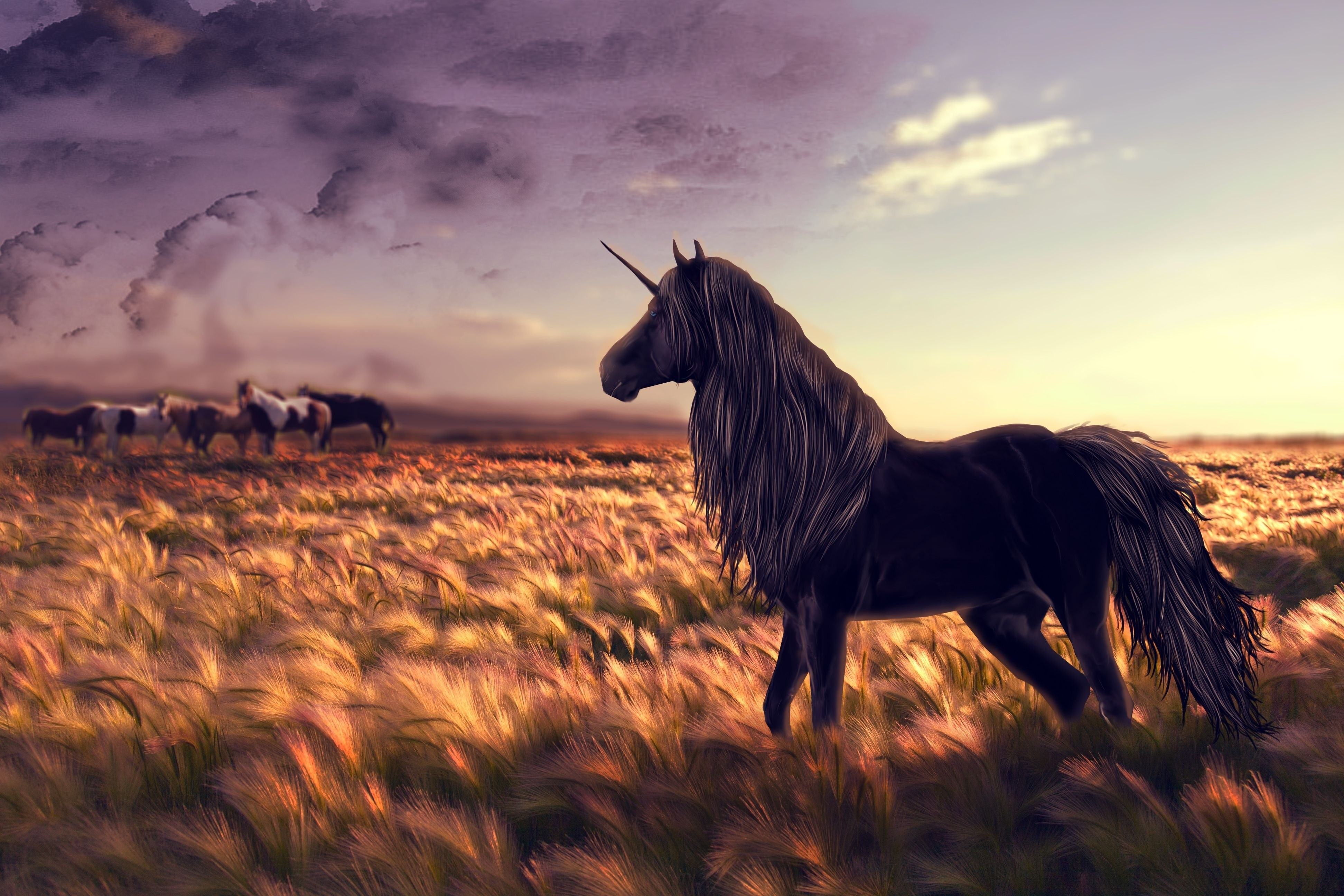 118661 Screensavers and Wallpapers Unicorn for phone. Download Grass, Art, Field, Horse, Unicorn, Wind pictures for free