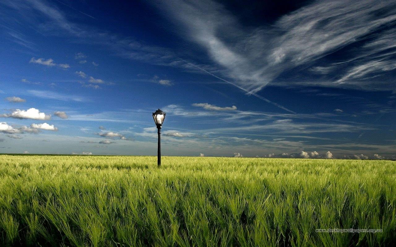 8931 скачать обои Пейзаж, Трава, Небо - заставки и картинки бесплатно
