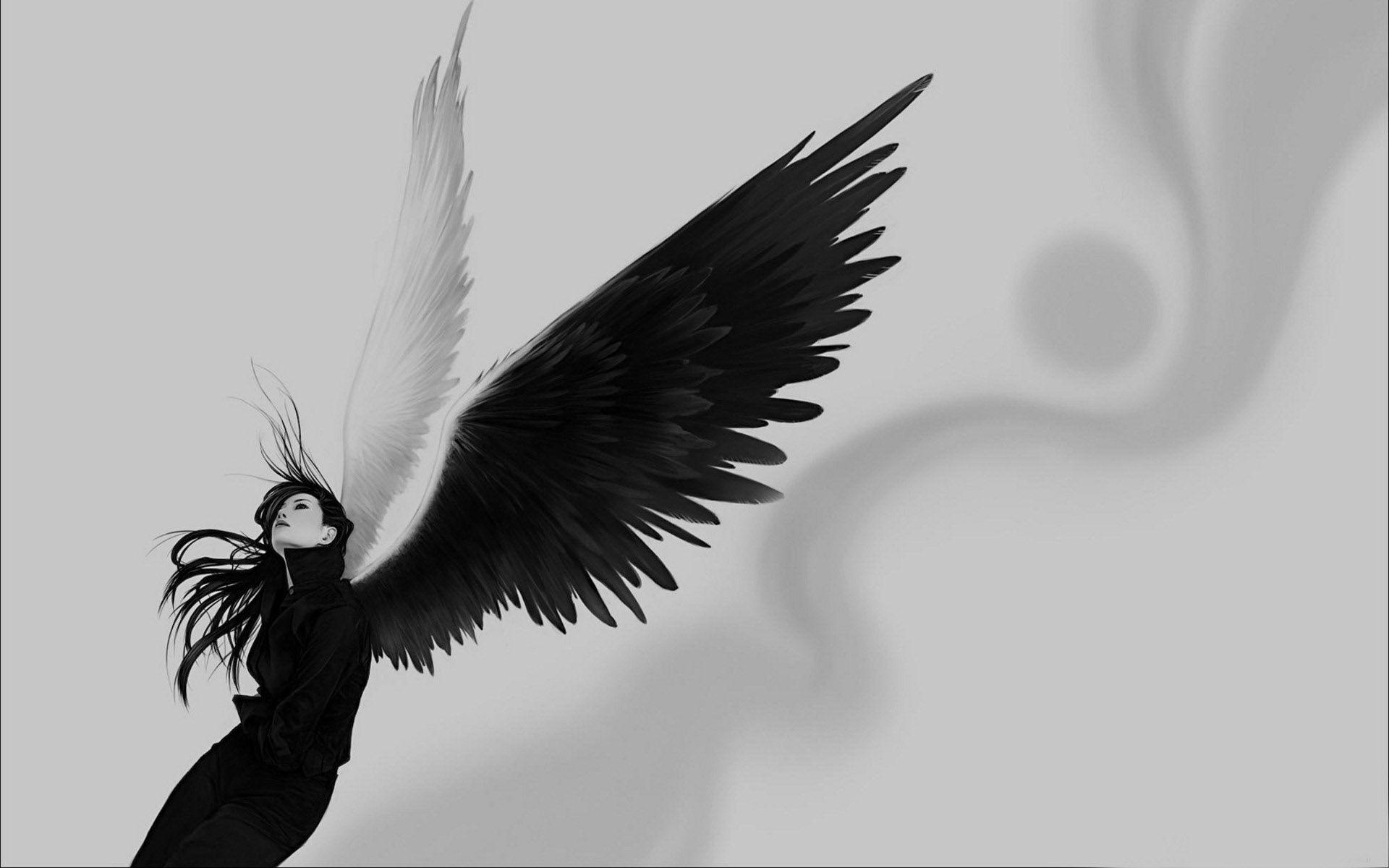 56099 скачать обои Фэнтези, Ангел, Крылья, Белое, Черное, Девушка - заставки и картинки бесплатно