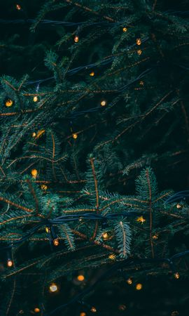114851 Screensavers and Wallpapers Holidays for phone. Download Holidays, Branches, Garland, Spruce, Fir pictures for free