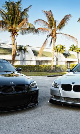 34344 download wallpaper Transport, Auto, Bmw screensavers and pictures for free