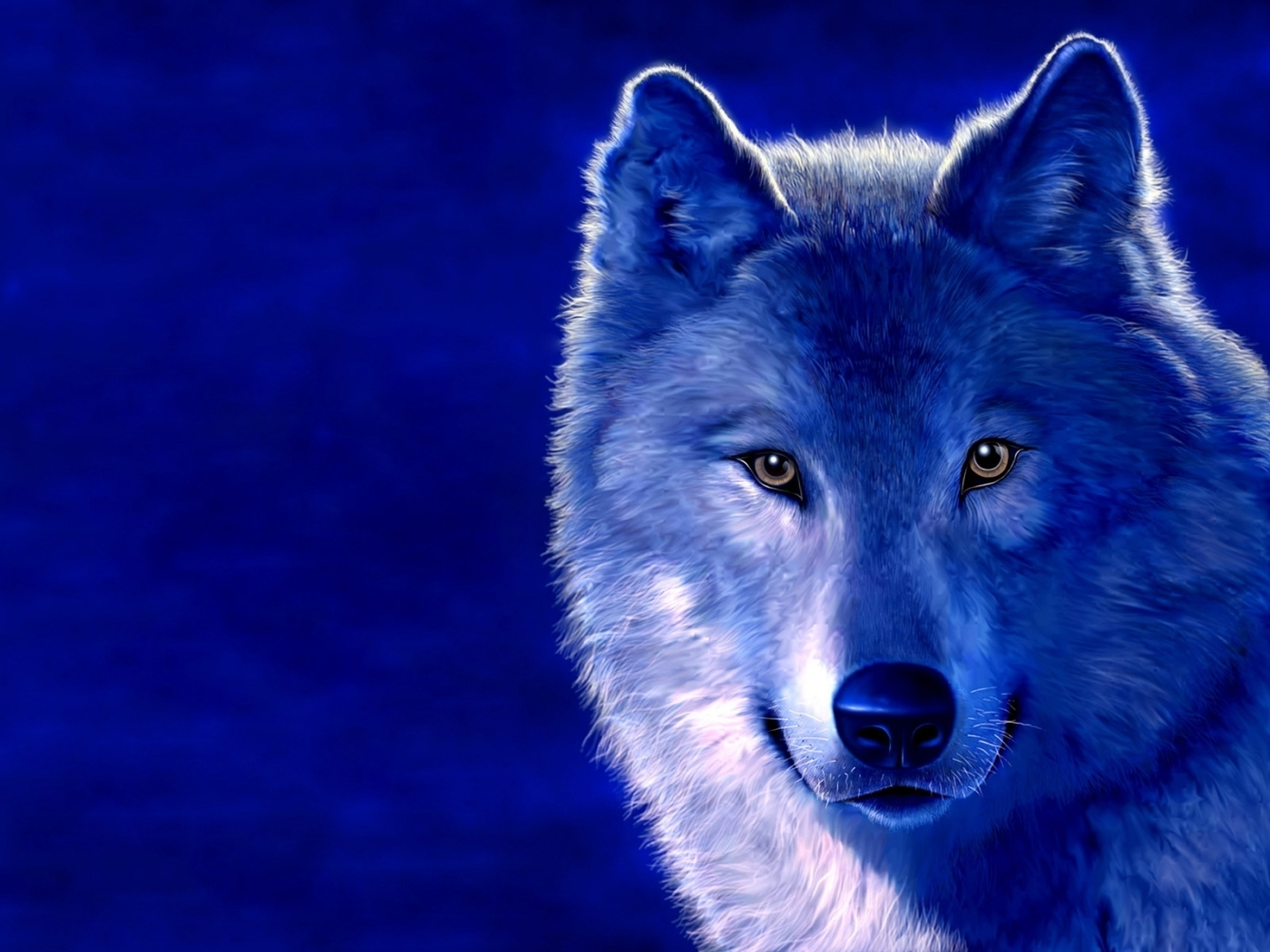 27516 скачать обои Волки, Животные - заставки и картинки бесплатно
