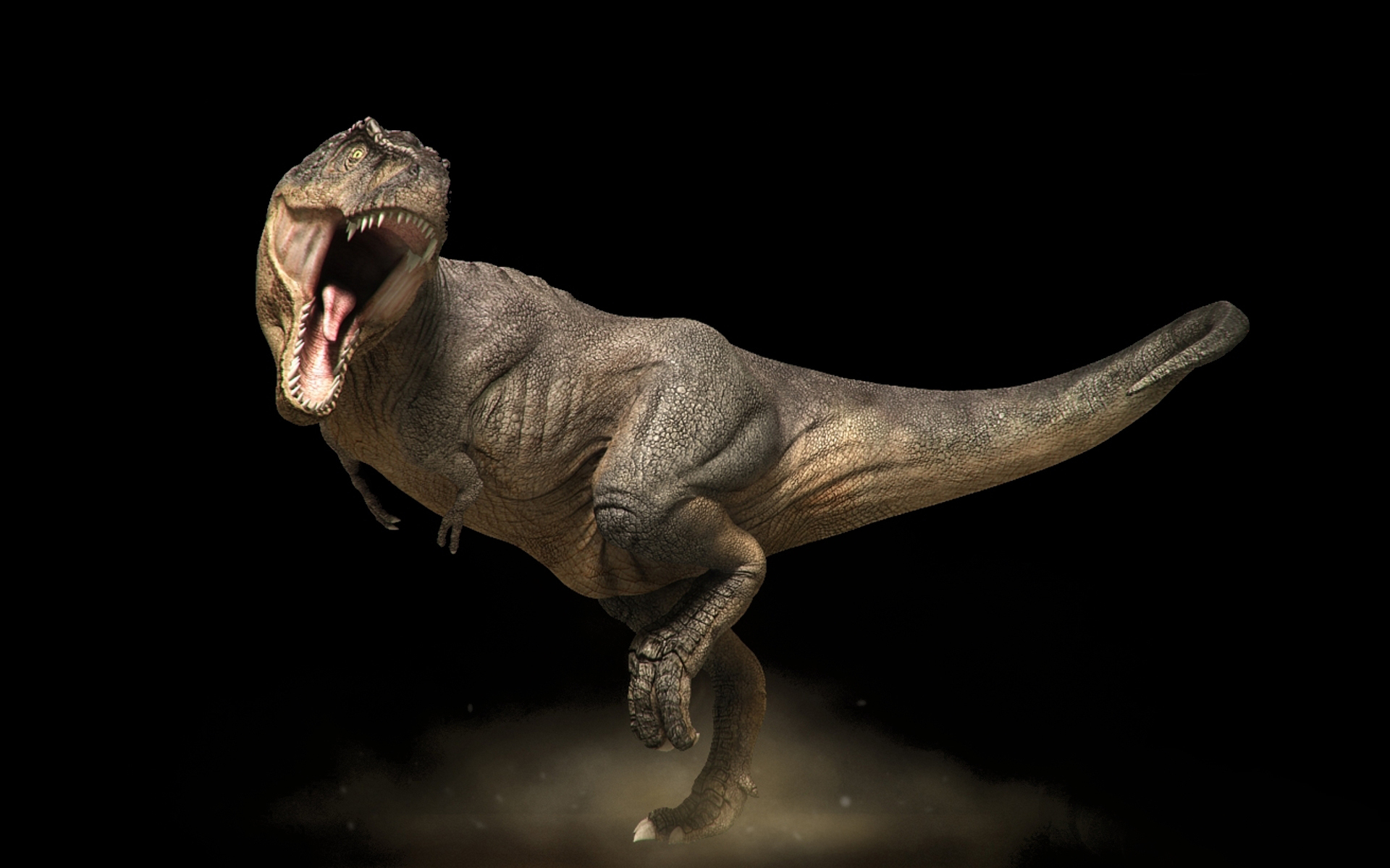 20444 download wallpaper Animals, Dinosaurs screensavers and pictures for free