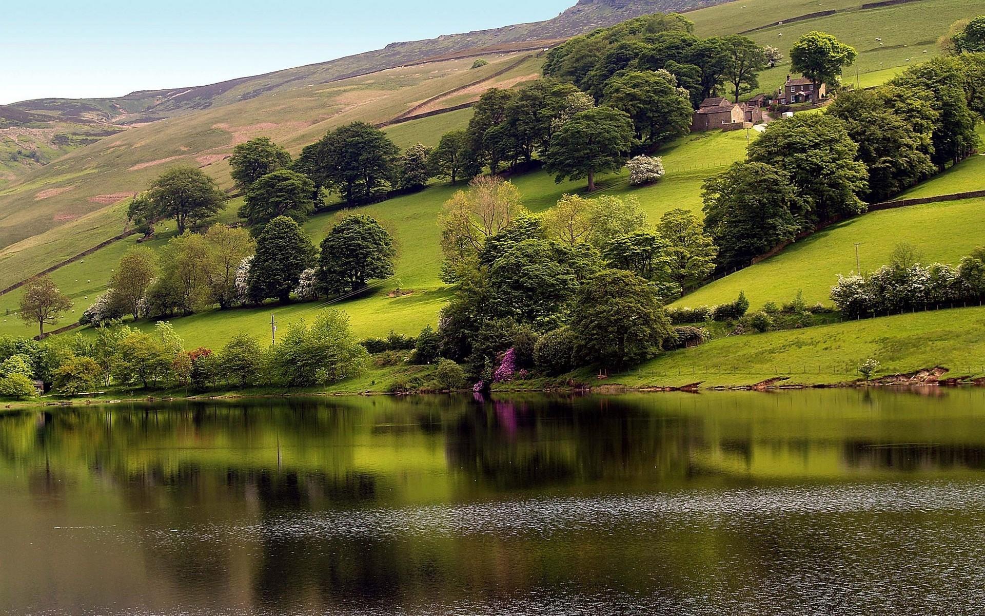 12239 скачать обои Пейзаж, Вода, Река, Деревья - заставки и картинки бесплатно