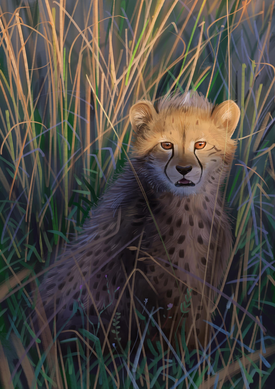 82198 download wallpaper Cheetah, Big Cat, Predator, Art, Wildlife screensavers and pictures for free