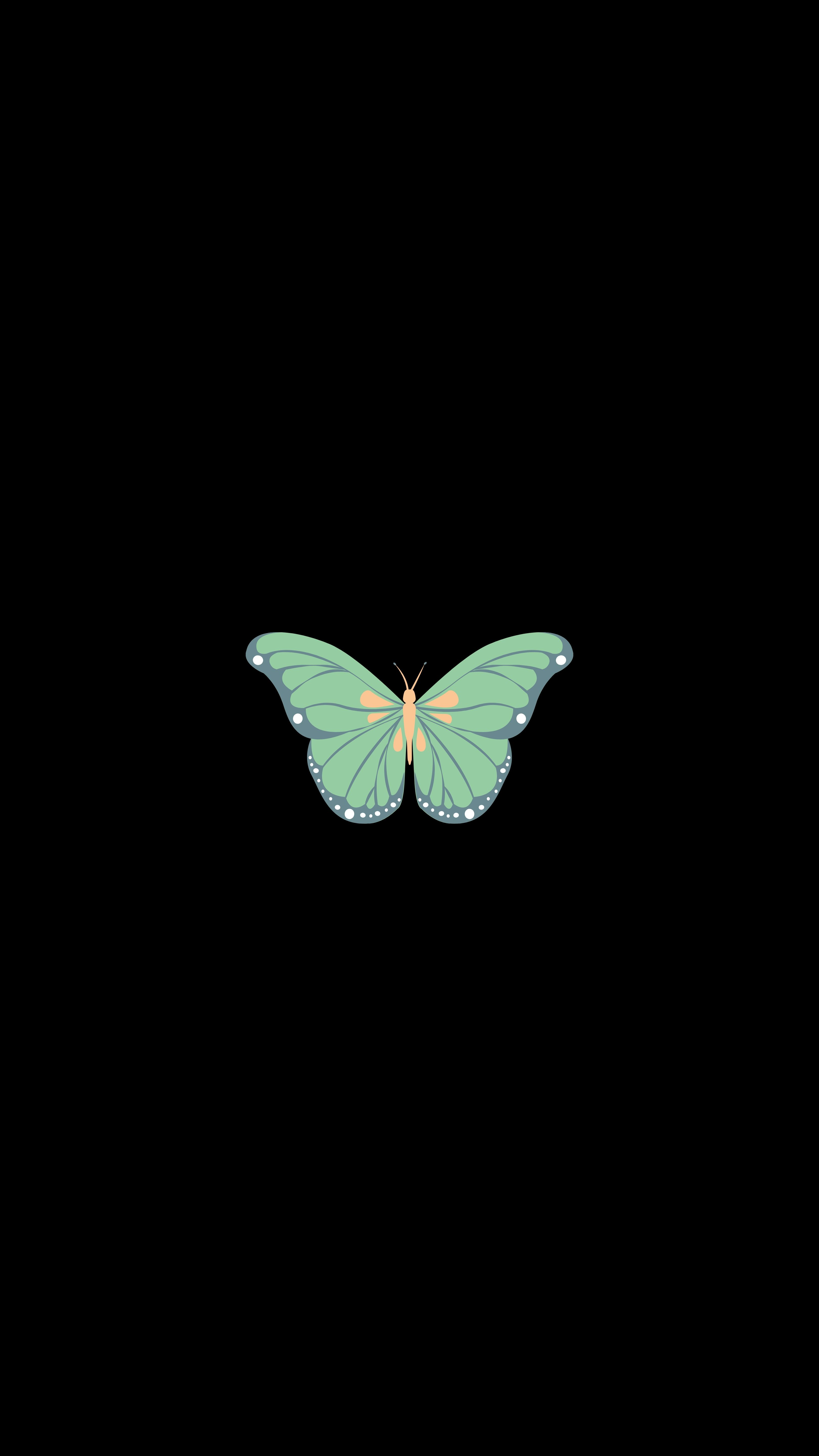 106673 download wallpaper Art, Vector, Minimalism, Butterfly screensavers and pictures for free