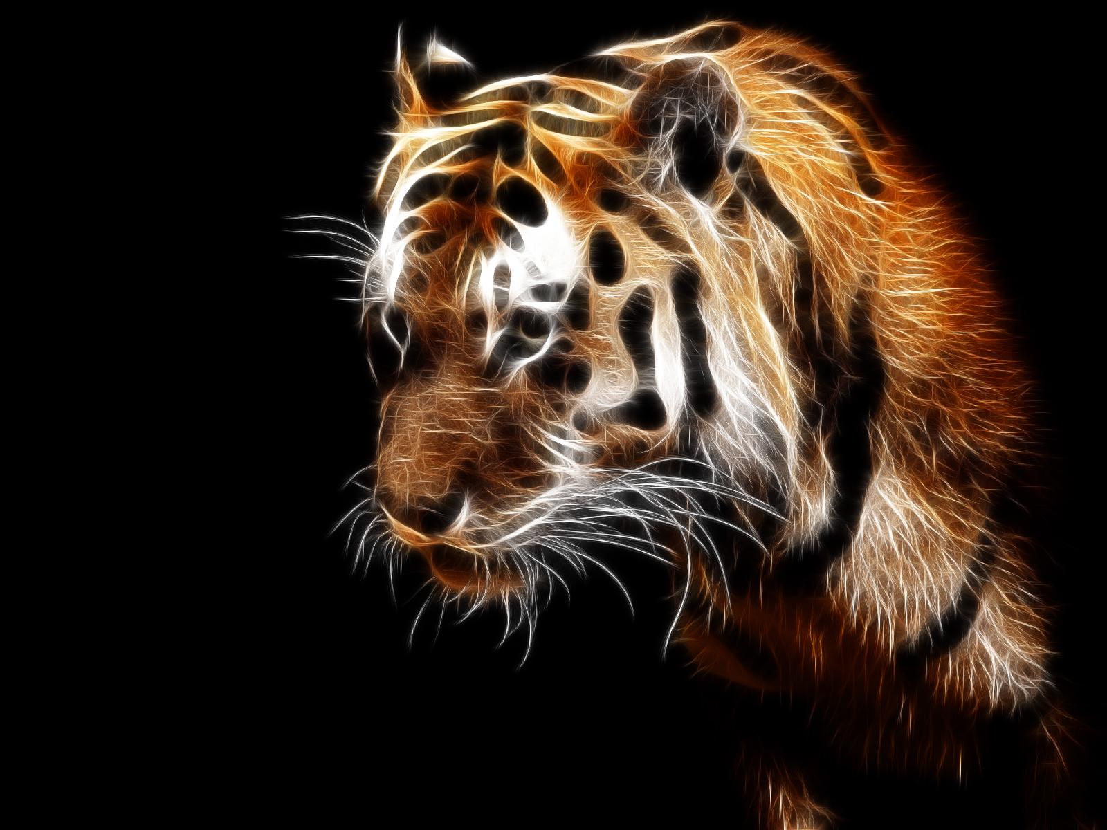 11336 Hintergrundbild herunterladen Tigers, Tiere, Kunst - Bildschirmschoner und Bilder kostenlos