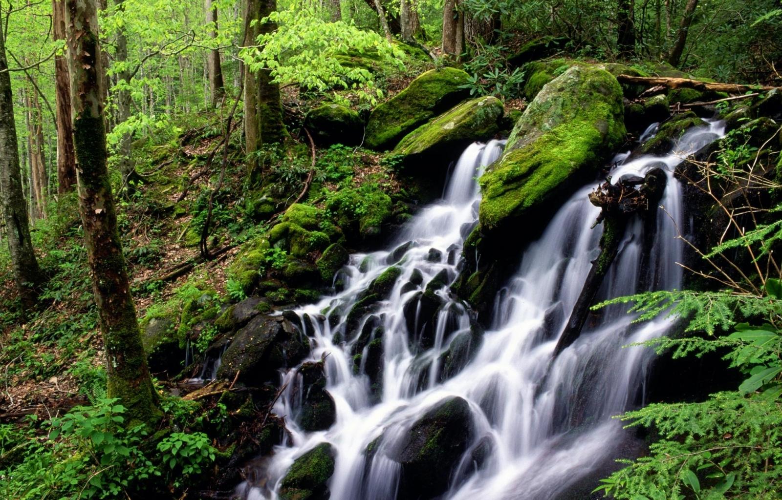 8263 завантажити шпалери Пейзаж, Вода, Водоспади - заставки і картинки безкоштовно
