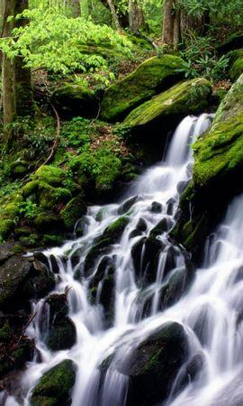 8263 скачать обои Пейзаж, Вода, Водопады - заставки и картинки бесплатно