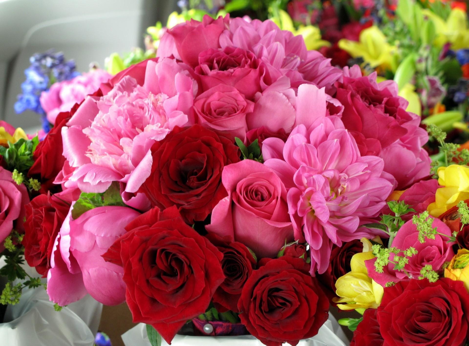 58720 скачать обои Цветы, Розы, Пионы, Букет, Яркий - заставки и картинки бесплатно