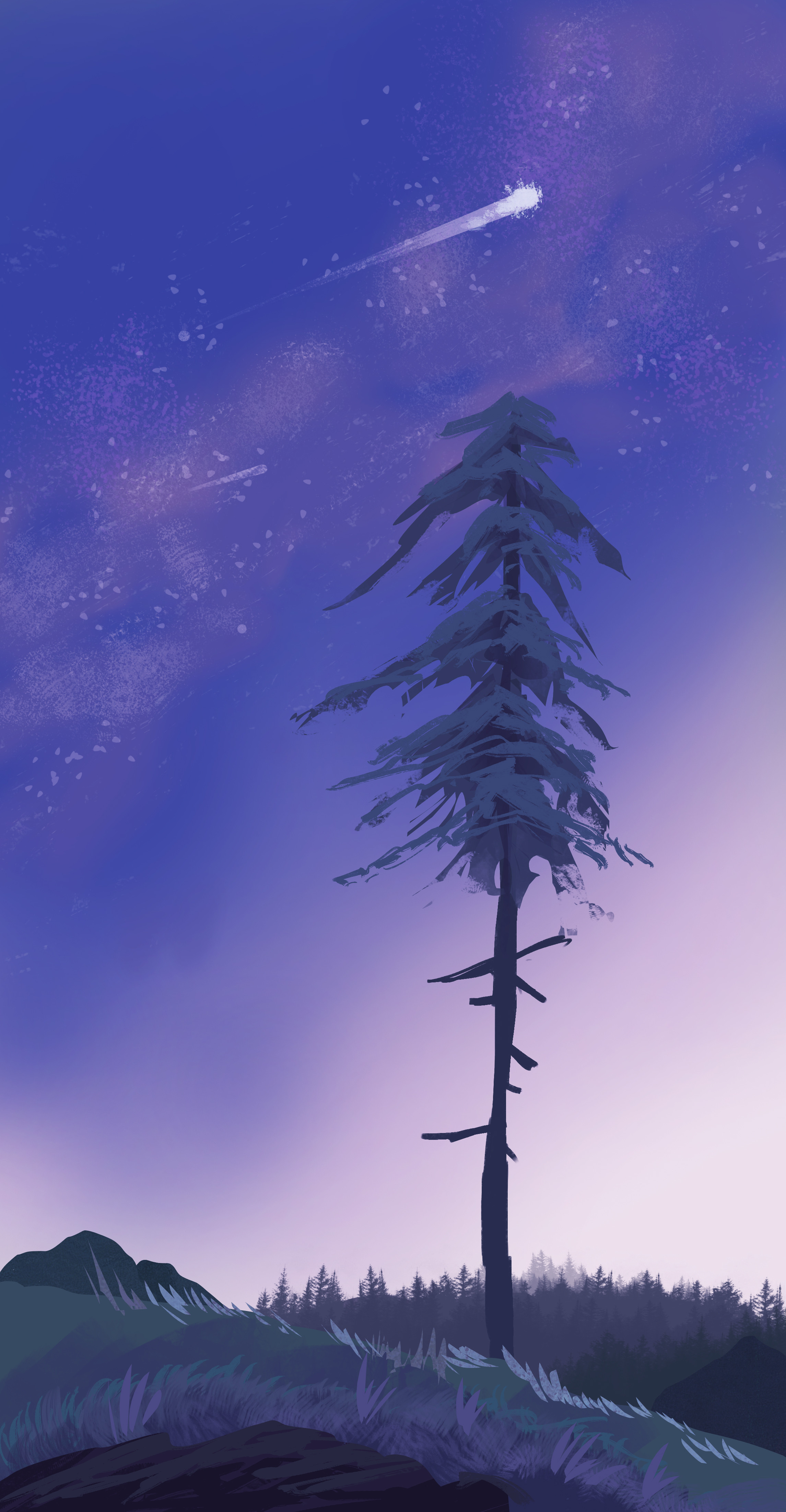 129362 download wallpaper Pine, Comet, Dusk, Twilight, Grass, Art screensavers and pictures for free