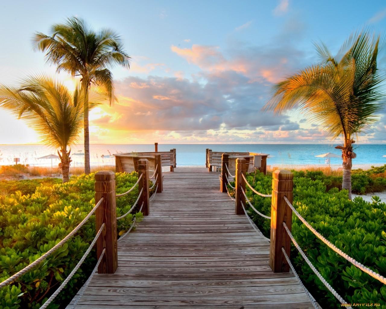17123 скачать обои Пейзаж, Закат, Море, Пляж, Пальмы - заставки и картинки бесплатно