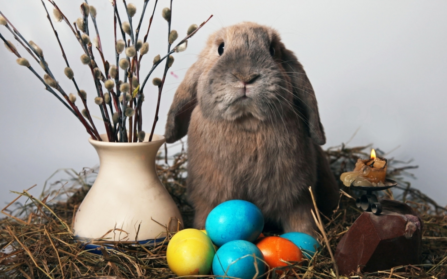 49170 download wallpaper Animals, Holidays, Rabbits screensavers and pictures for free