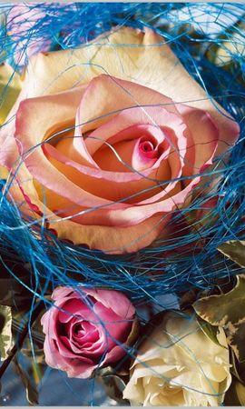 27452 baixar papel de parede Plantas, Flores, Rosas, Bouquets - protetores de tela e imagens gratuitamente