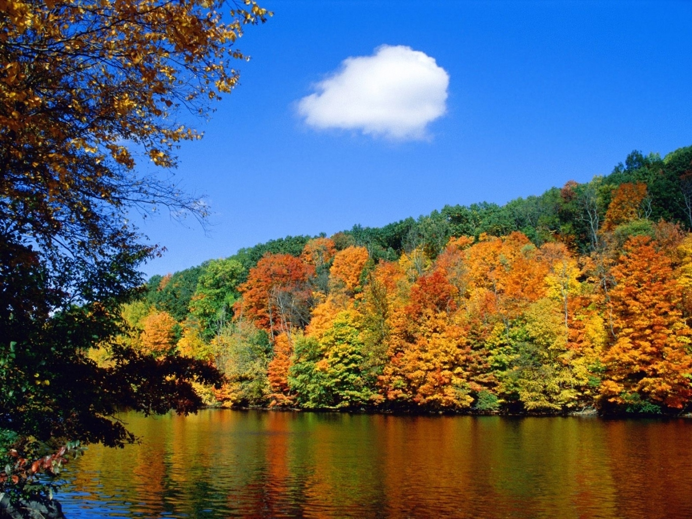 31572 download wallpaper Landscape, Rivers, Autumn screensavers and pictures for free