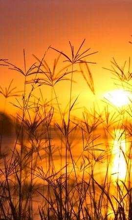 45831 baixar papel de parede Paisagem, Natureza, Pôr Do Sol - protetores de tela e imagens gratuitamente