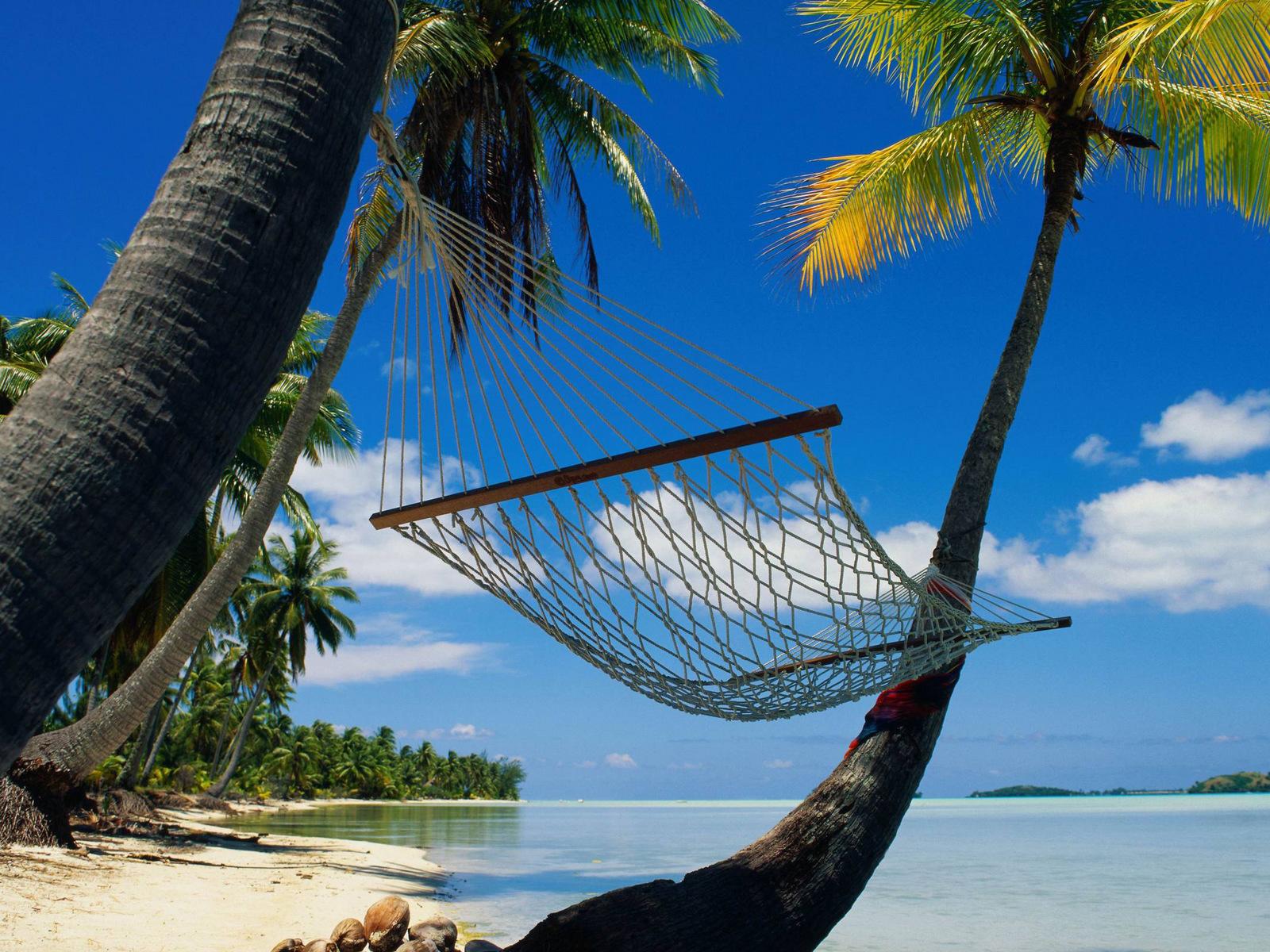 21502壁紙のダウンロード風景, 海, ビーチ, パームス-スクリーンセーバーと写真を無料で