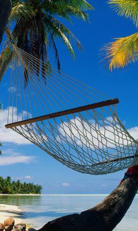 21502 descargar fondo de pantalla Paisaje, Mar, Playa, Palms: protectores de pantalla e imágenes gratis