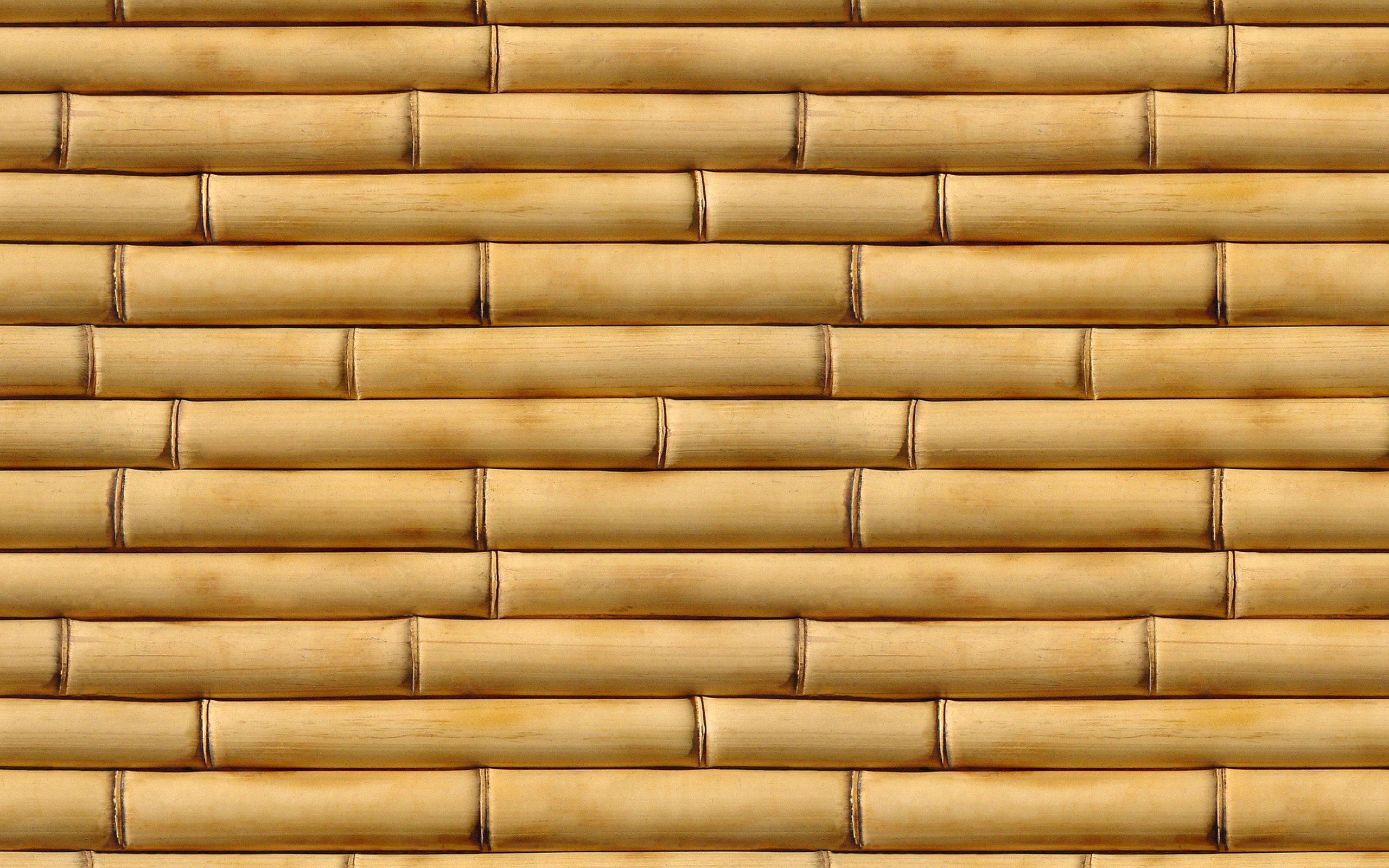 147973 download wallpaper Textures, Texture, Bamboo, Vertical, Wood, Wooden screensavers and pictures for free