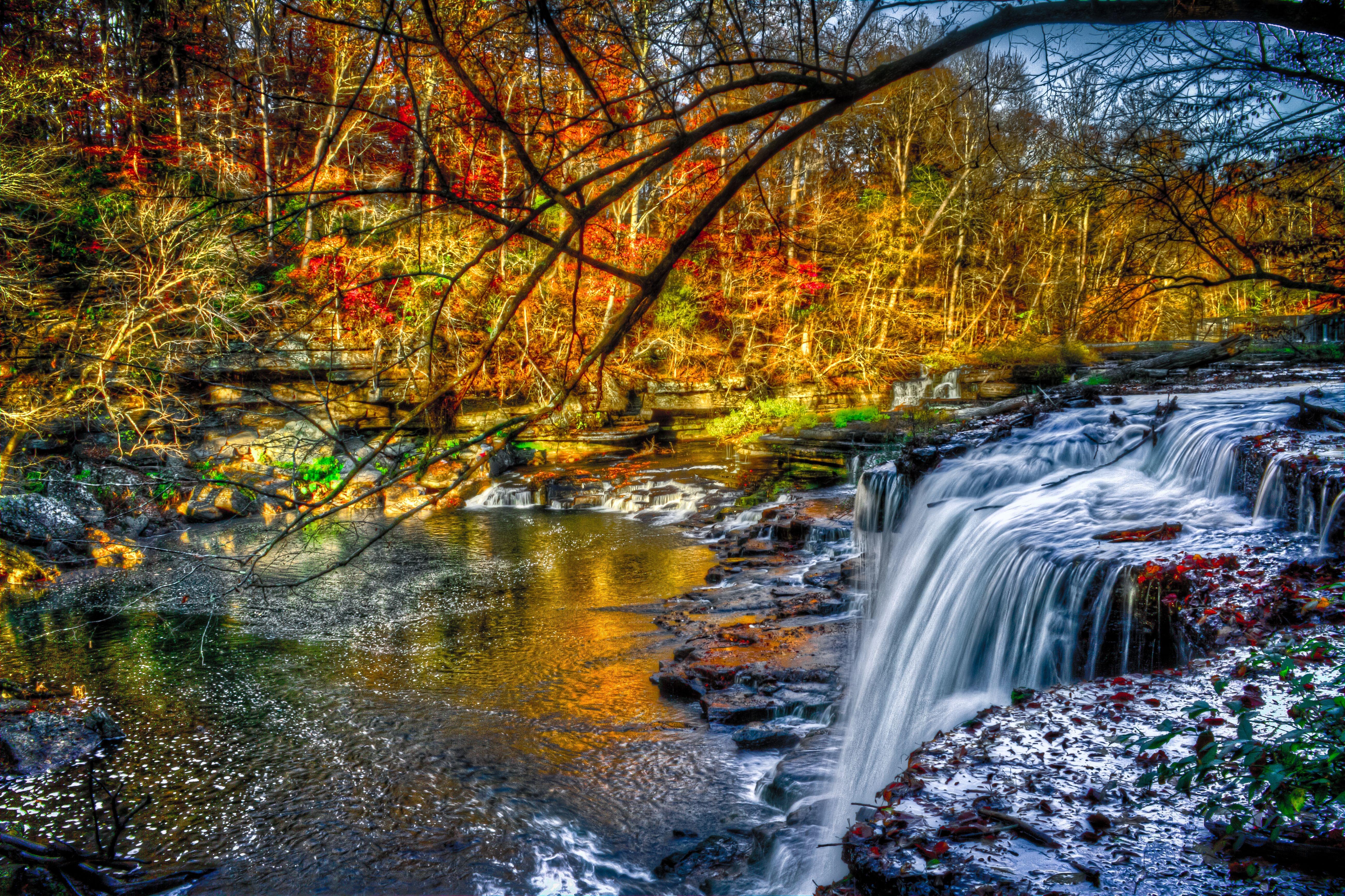 120283 скачать обои Река, Водопад, Природа, Лес - заставки и картинки бесплатно