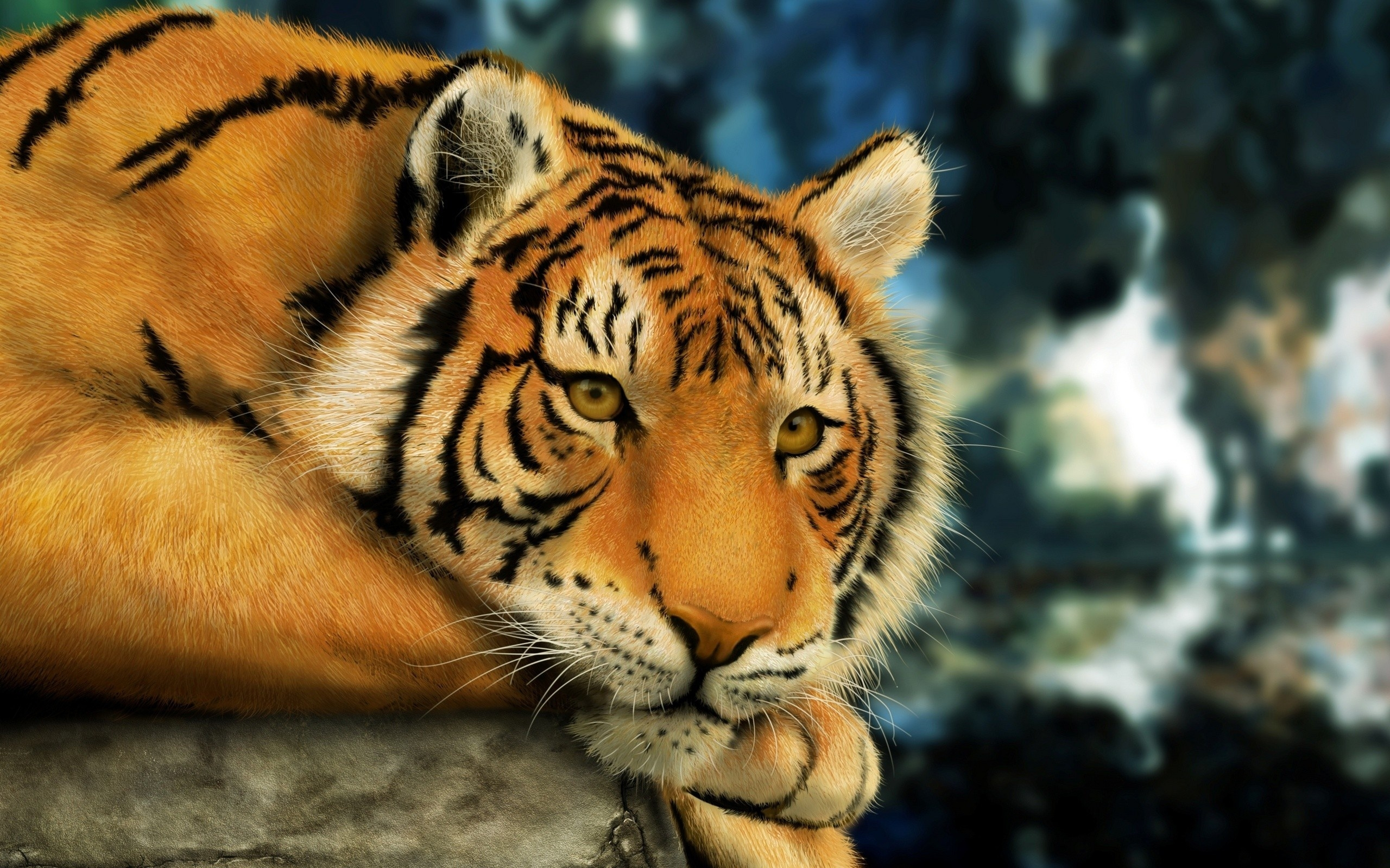 37591 download wallpaper Animals, Tigers screensavers and pictures for free