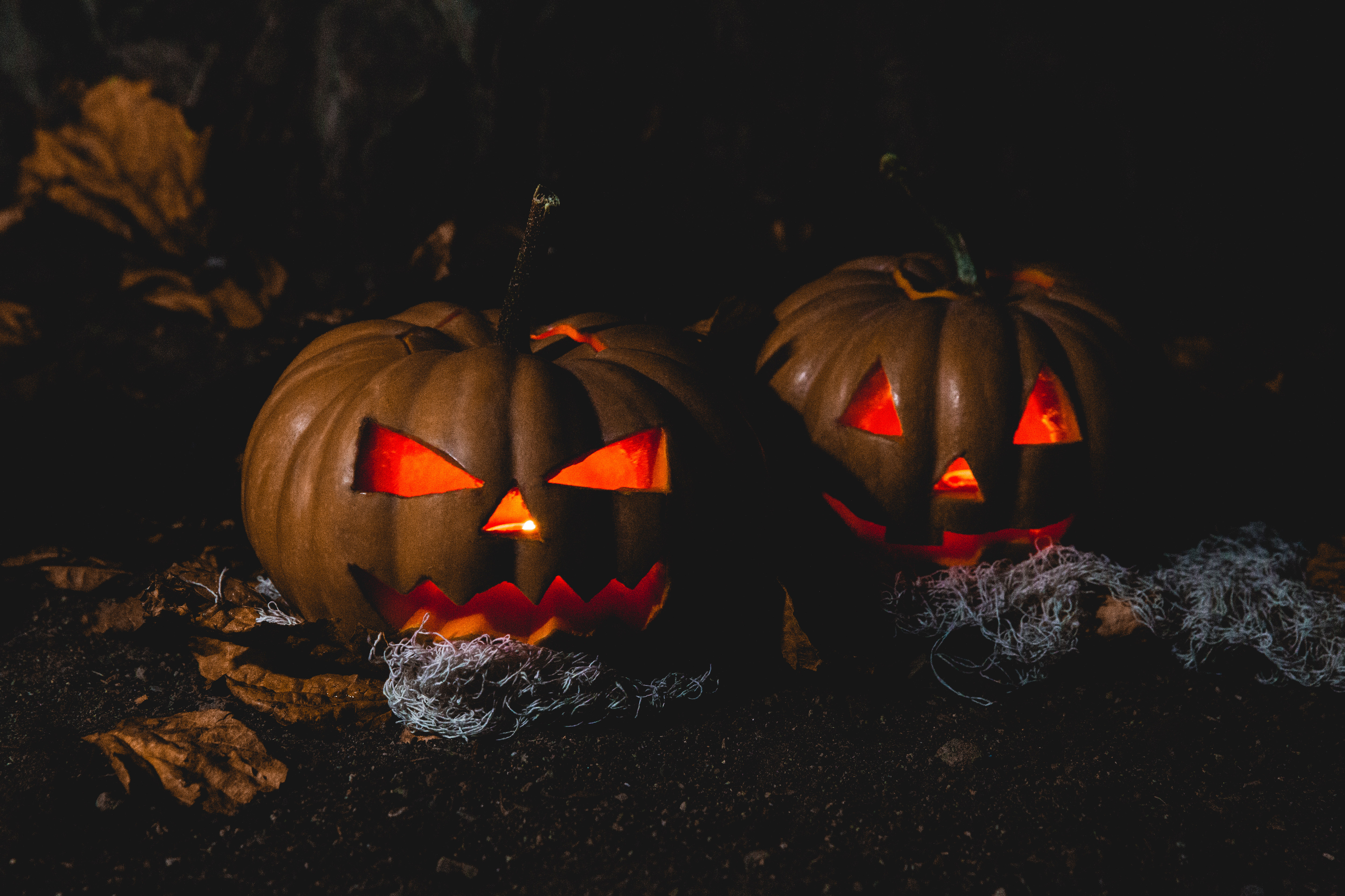 78096 download wallpaper Halloween, Holidays, Pumpkin, Dark screensavers and pictures for free