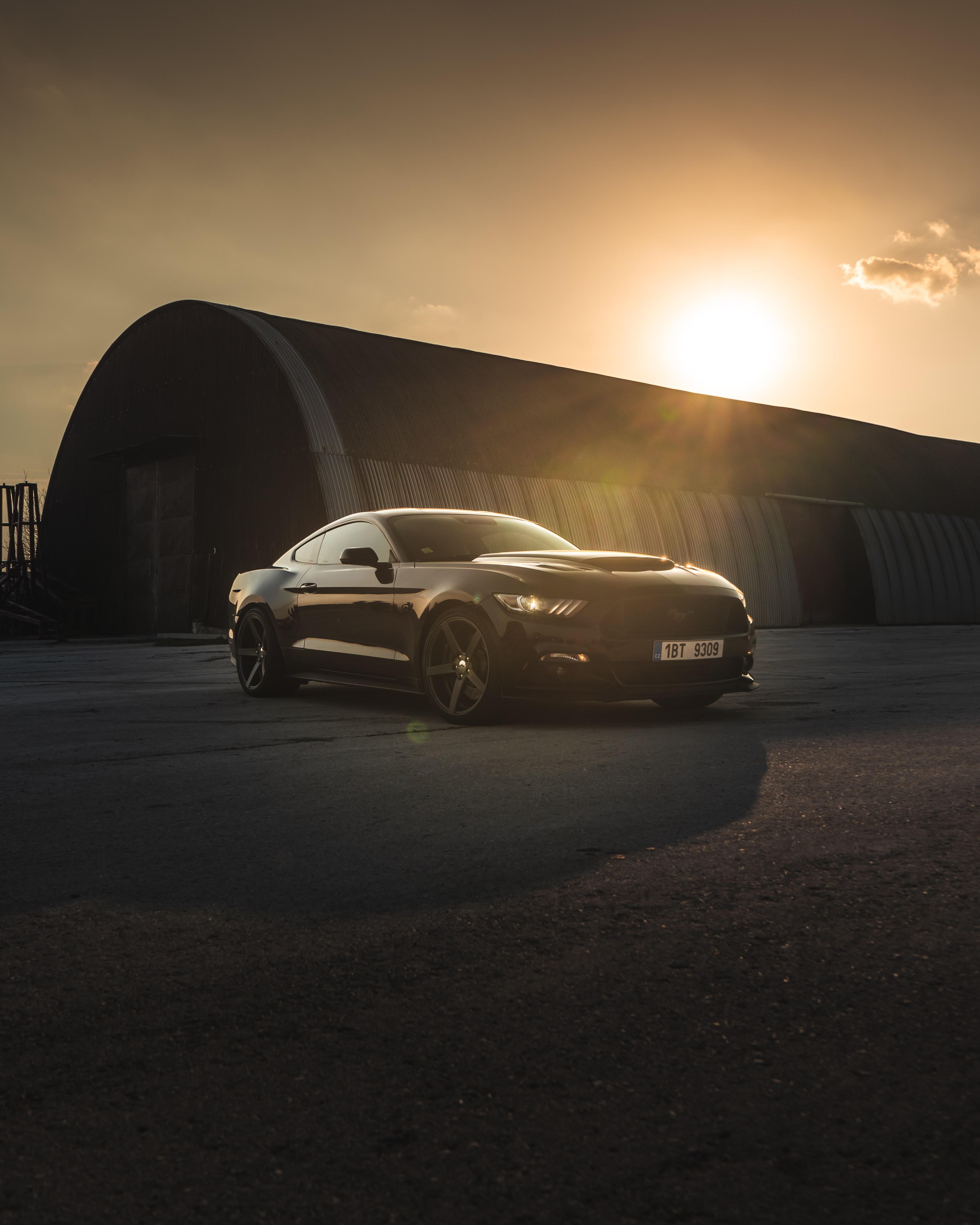 104692 скачать обои Мустанг (Mustang), Тачки (Cars), Закат, Автомобиль, Черный, Спорткар, Вид Сбоку, Ford Mustang - заставки и картинки бесплатно