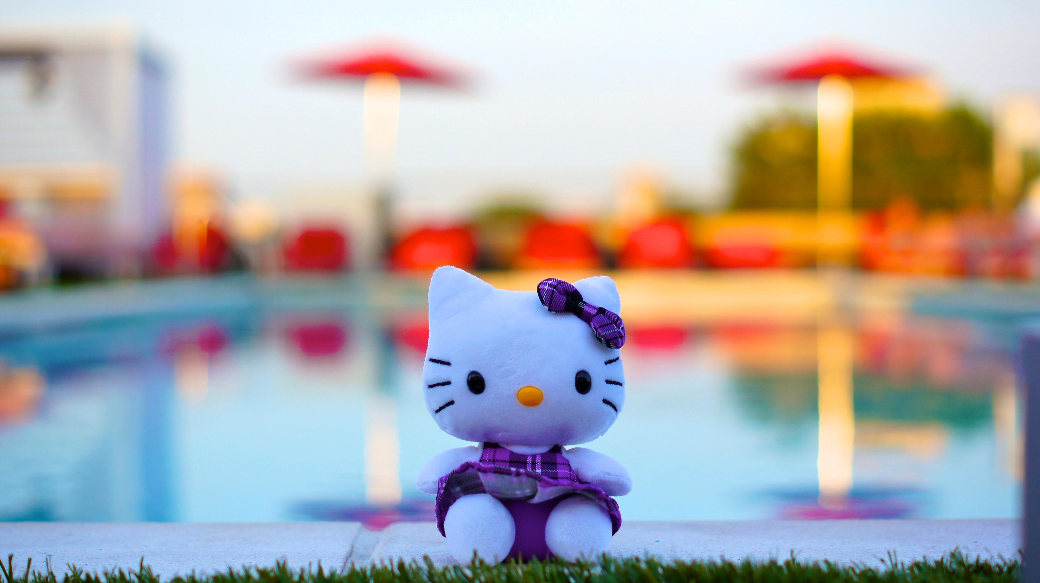 123457 Hintergrundbild herunterladen Spielzeug, Verschiedenes, Sonstige, Kätzchen, Nett, Schatz, Bogen - Bildschirmschoner und Bilder kostenlos