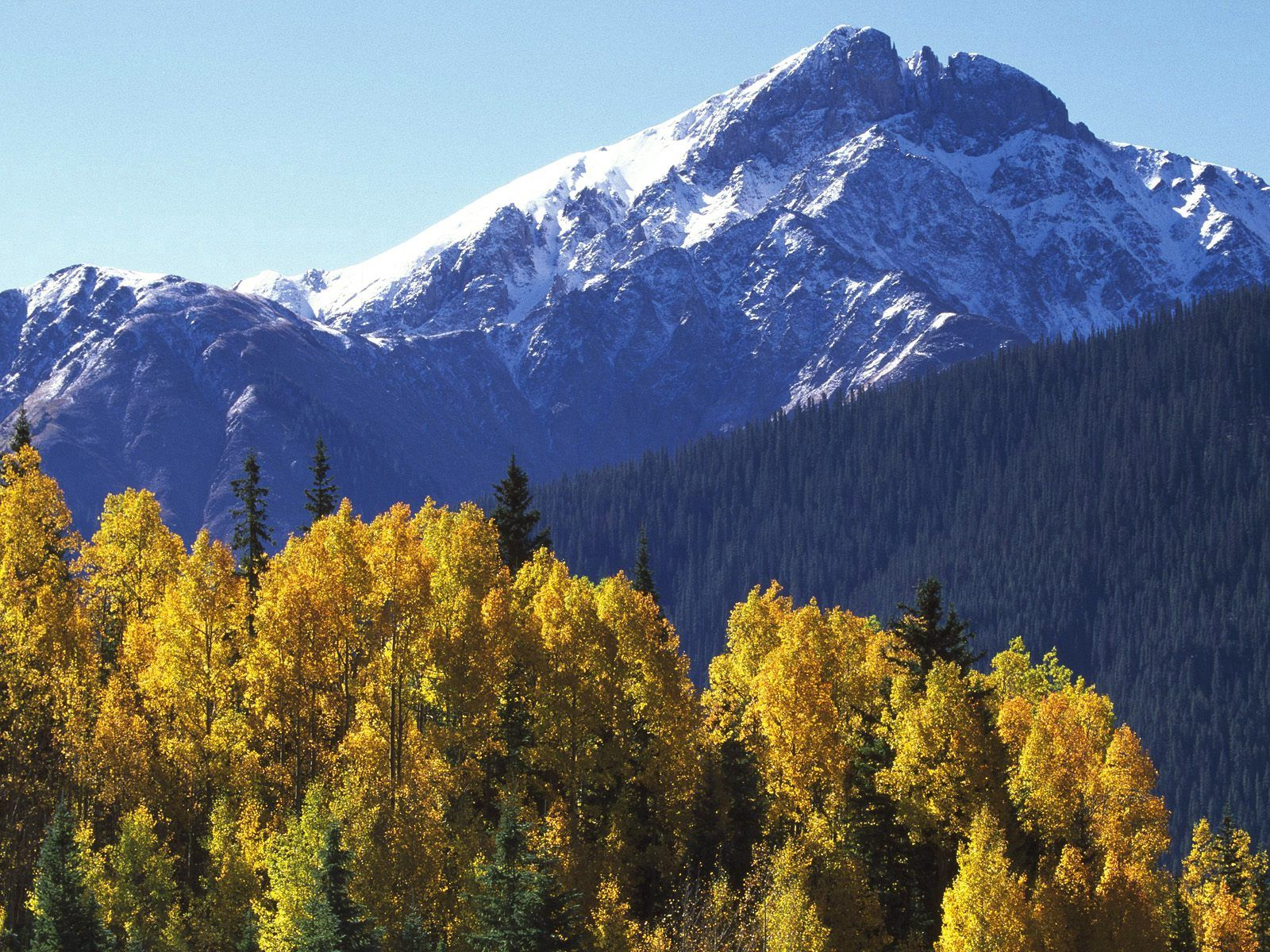 148468 download wallpaper Nature, Vertex, Top, Trees, Autumn, Mountains screensavers and pictures for free