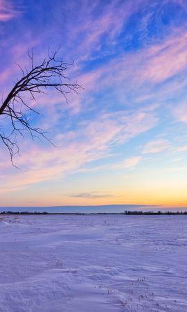30118 скачать обои Пейзаж, Зима, Деревья, Закат - заставки и картинки бесплатно