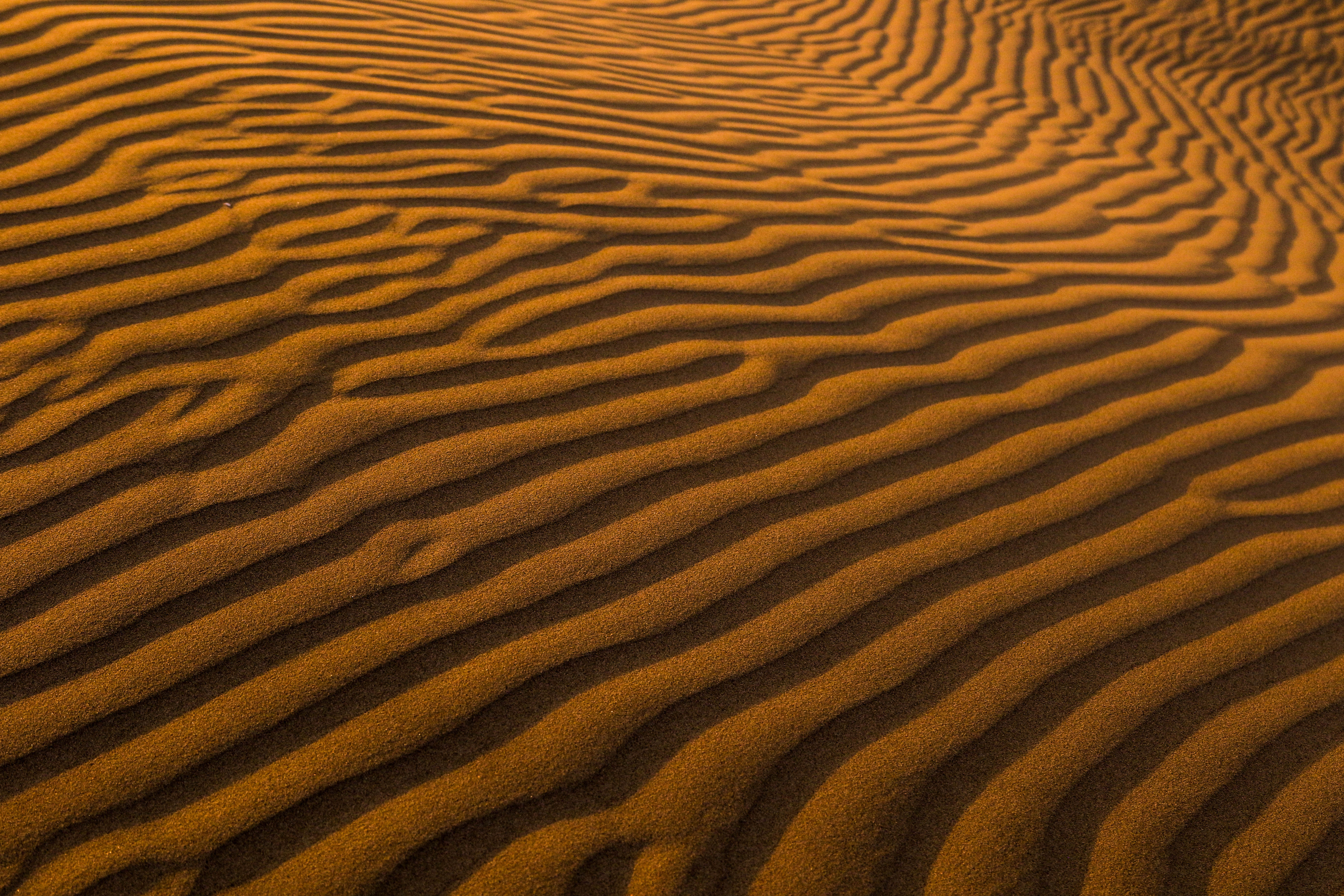 145894 Заставки и Обои Пустыня на телефон. Скачать Поверхность, Природа, Песок, Пустыня картинки бесплатно