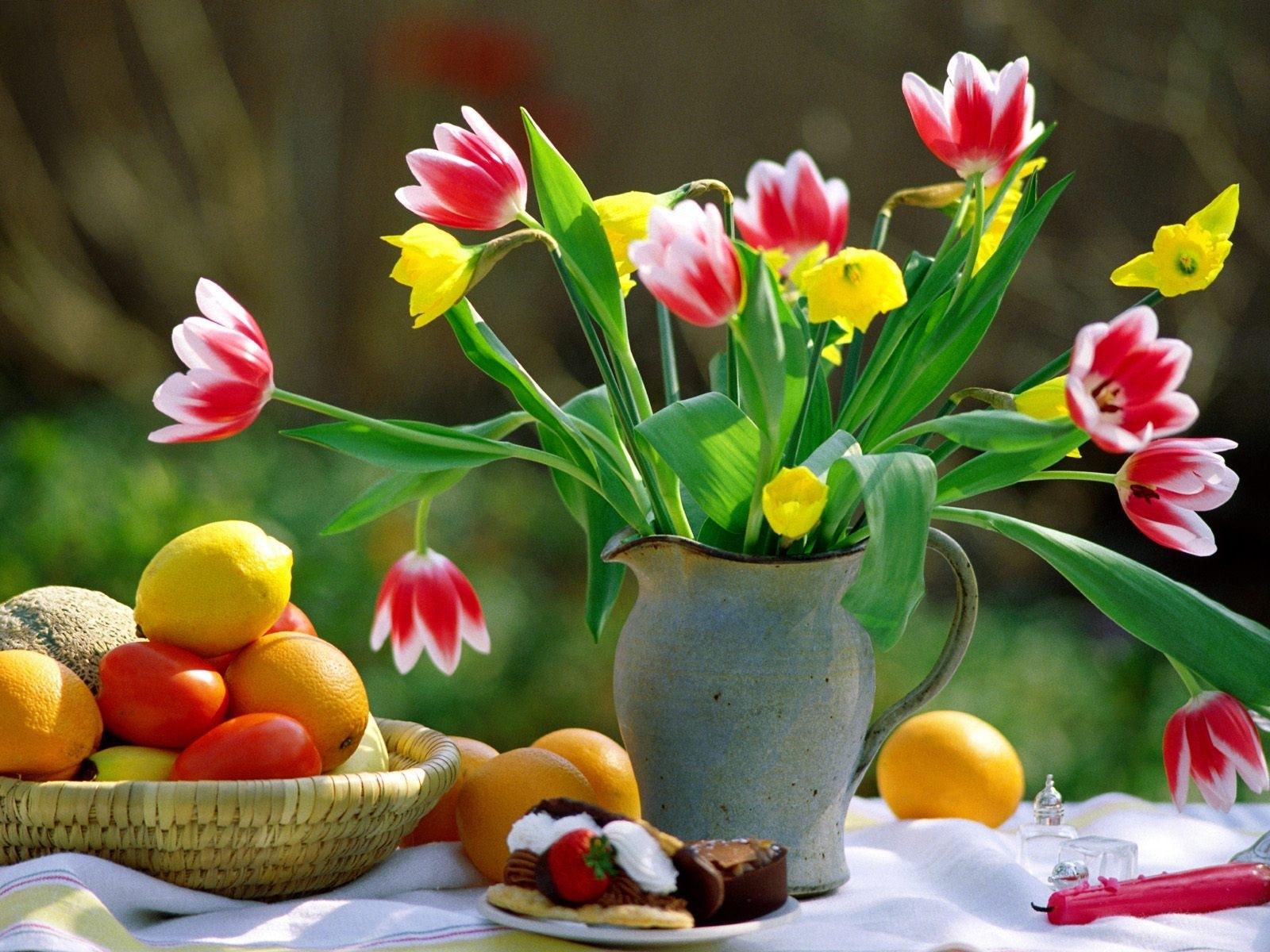 4371 скачать обои Растения, Цветы, Тюльпаны - заставки и картинки бесплатно