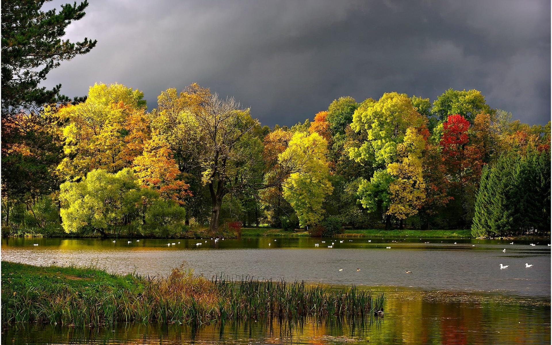 21976 скачать обои Пейзаж, Река, Деревья, Осень - заставки и картинки бесплатно