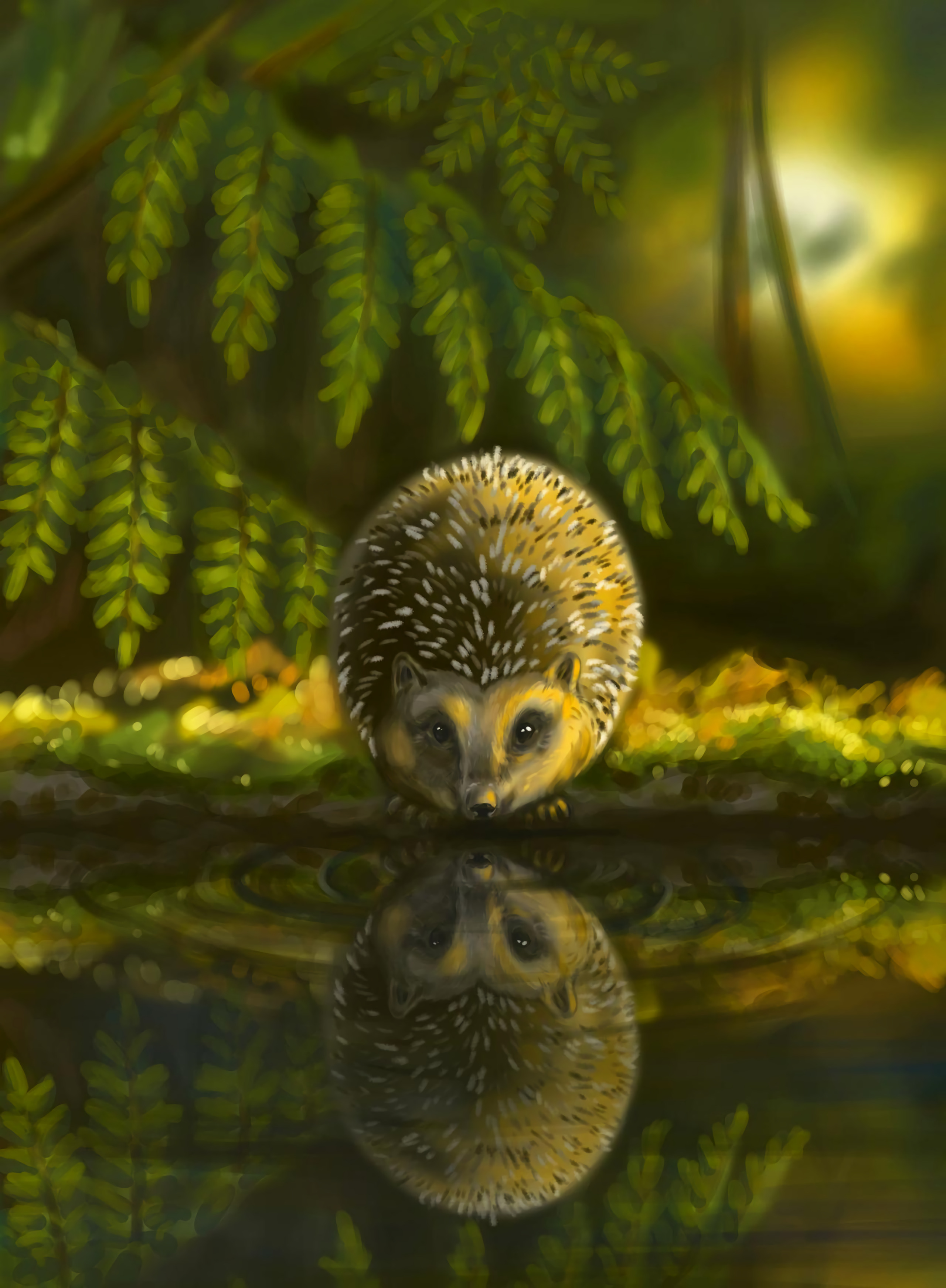 100250 download wallpaper Hedgehog, Animal, Nice, Sweetheart, Art screensavers and pictures for free