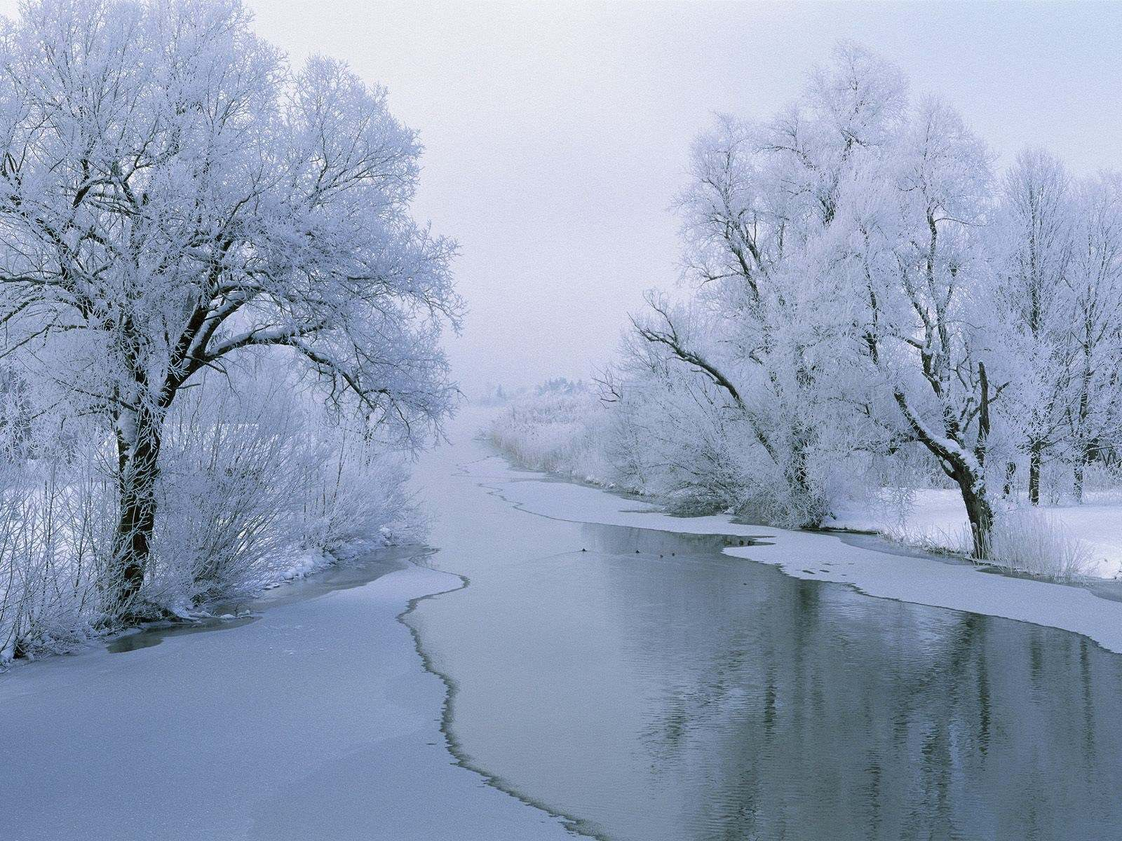 45091 download wallpaper Landscape, Winter, Snow screensavers and pictures for free