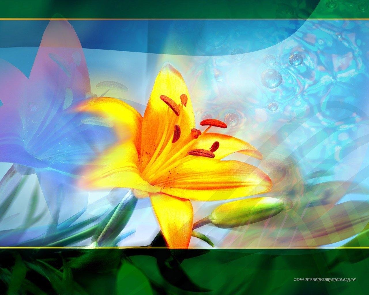 Téléchargez des papiers peints mobile Lilies, Plantes, Fleurs gratuitement.