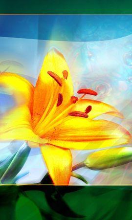 8233 скачать обои Растения, Цветы, Лилии - заставки и картинки бесплатно