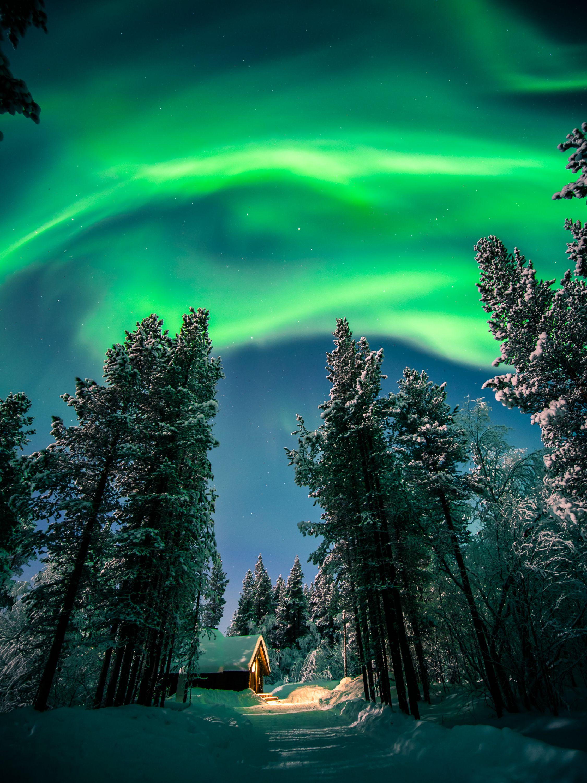 148482 завантажити шпалери Зима, Природа, Ніч, Сніг, Ліс, Північне Сяйво, Полярне Сяйво, Аврора - заставки і картинки безкоштовно