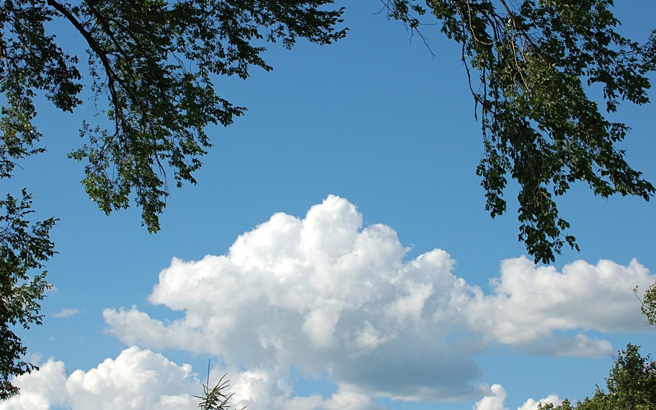 21457 скачать обои Пейзаж, Деревья, Небо, Облака - заставки и картинки бесплатно