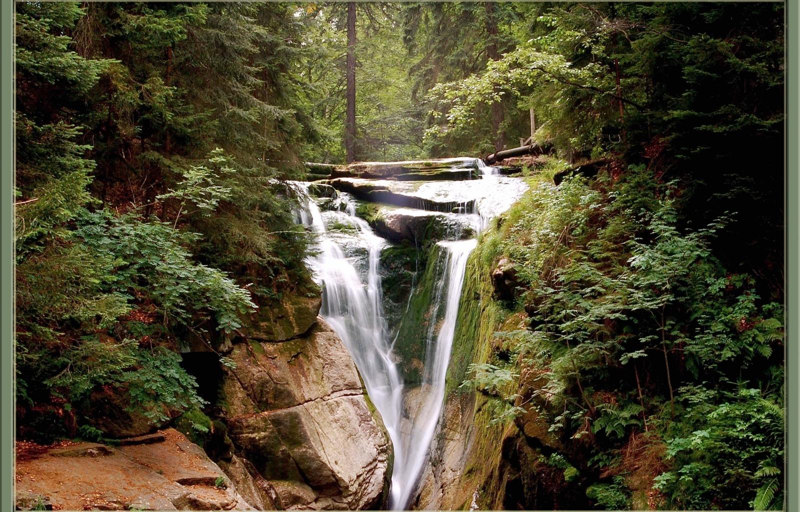 4571 скачать обои Пейзаж, Деревья, Водопады - заставки и картинки бесплатно