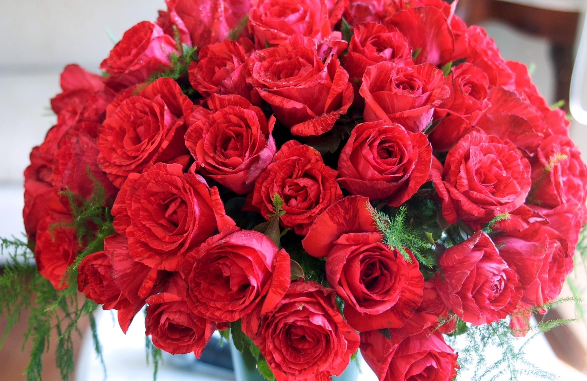 105538 Заставки и Обои Розы на телефон. Скачать Розы, Цветы, Букет, Шикарно картинки бесплатно