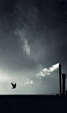 17495 скачать обои Пейзаж, Небо, Ночь - заставки и картинки бесплатно