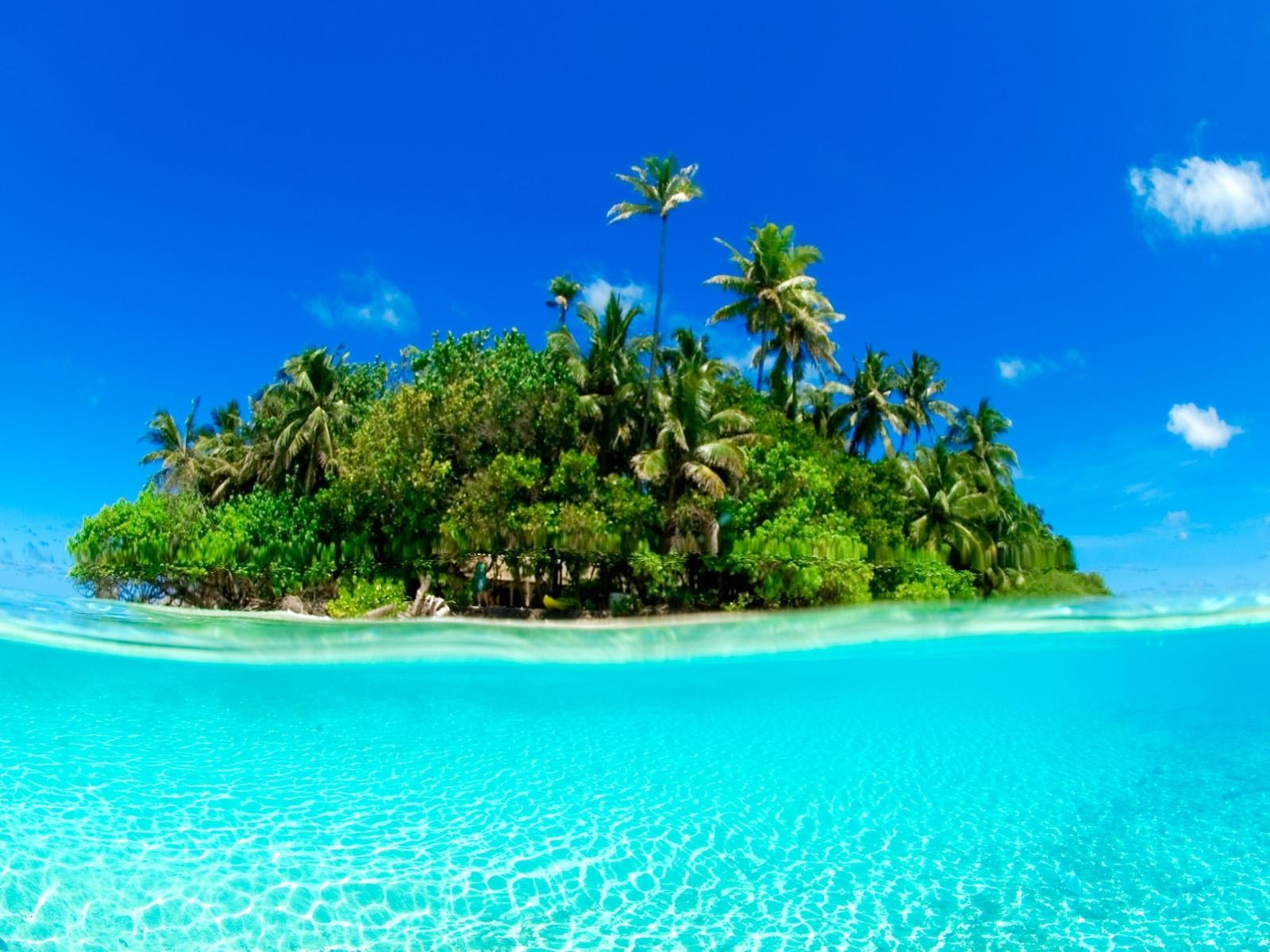 448 Hintergrundbild herunterladen Landschaft, Wasser, Bäume, Sky, Sea, Fotokunst, Palms - Bildschirmschoner und Bilder kostenlos