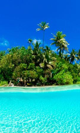 448 скачать обои Пейзаж, Вода, Деревья, Небо, Море, Артфото, Пальмы - заставки и картинки бесплатно