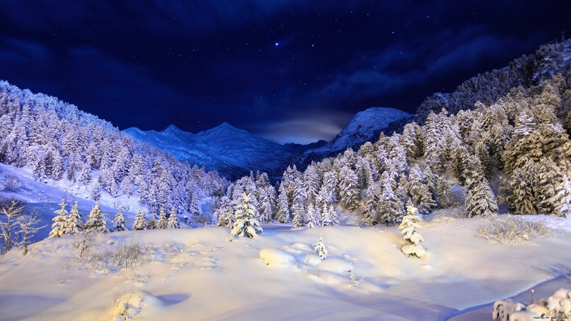 29046 скачать обои Пейзаж, Деревья, Снег - заставки и картинки бесплатно