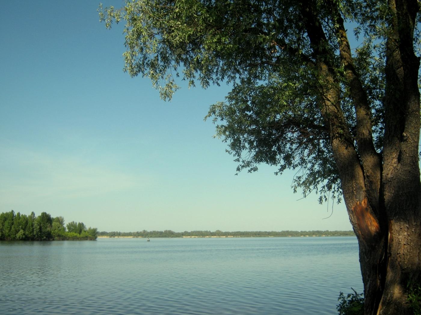 28106 скачать обои Пейзаж, Река, Деревья - заставки и картинки бесплатно