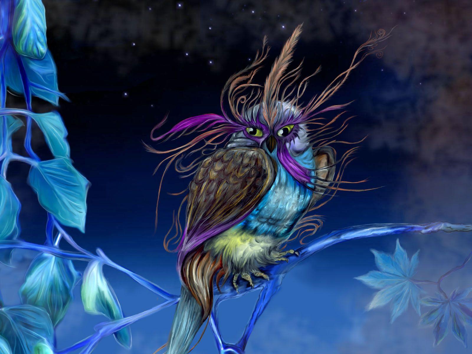 131608 Salvapantallas y fondos de pantalla Fantasía en tu teléfono. Descarga imágenes de Fantasía, Búho, Lechuza, Faisán, Ser, Criatura, Pájaro, Noche gratis