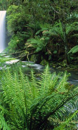 47396 скачать обои Пейзаж, Природа, Водопады - заставки и картинки бесплатно