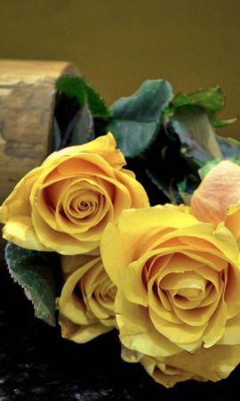 92293 завантажити шпалери Квіти, Букет, Рози - заставки і картинки безкоштовно